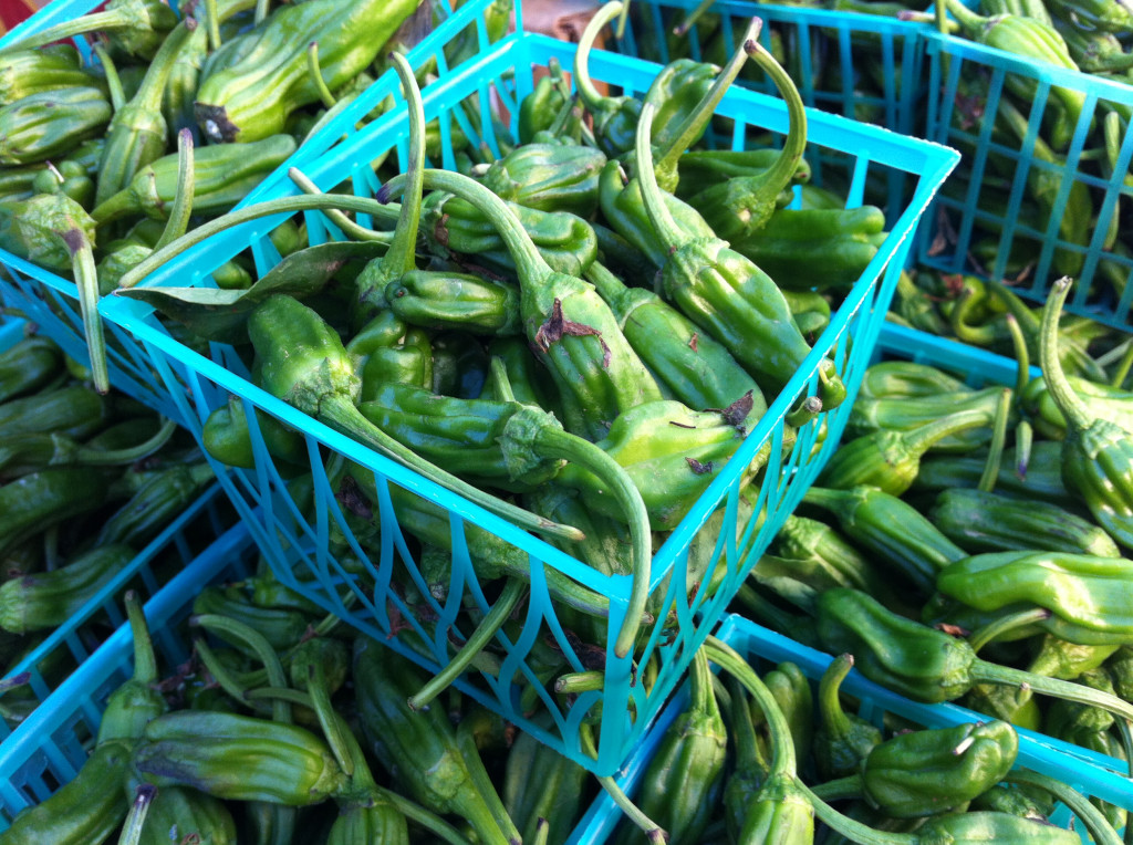 shishitos at market