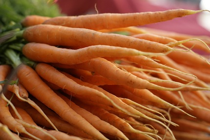 Carrots(fromMCM)_430
